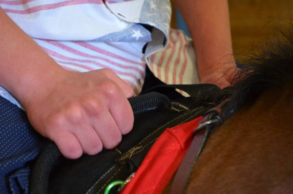 Mr. Bolander and Little Joe Horse Gear therapy saddle