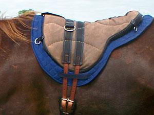 Little Joe Horse Gear new shaped blanket