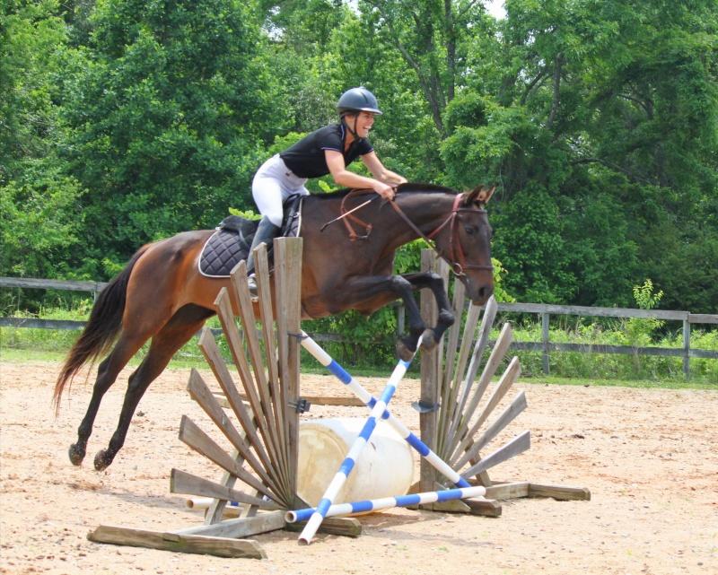 Victoria Adkins on horse with Little Joe Horse Gear