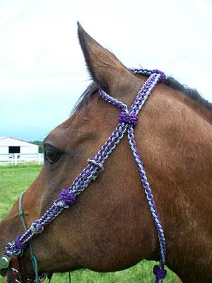 Little Joe Horse Gear single ear headstall