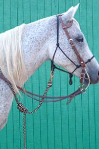 Little Joe Horse Gear lead rope