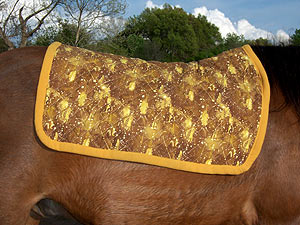 example of good blanket by Little Joe Horse Gear