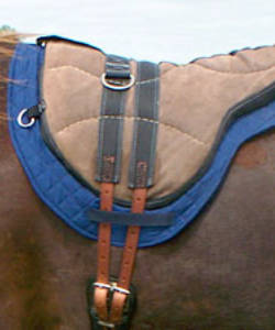 image of Little Joe Horse Gear saddle blanket