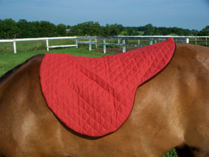 Little Joe Horse Gear shaped blanket in red