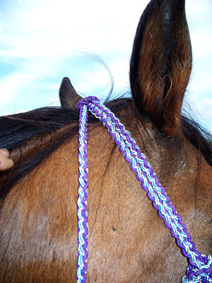 Little Joe Horse Gear single ear headstall